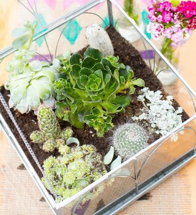 How many DIY wedding centerpieces that you know of have a cactus in them? This Unbelievable Terrarium Centerpiece is like a miniature world, an enclosed garden right in the center of your reception tables.