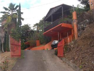 Pasto Puerto Rico, Venta Bienes Raices Coamo Puerto Rico, Real Estate for Sale