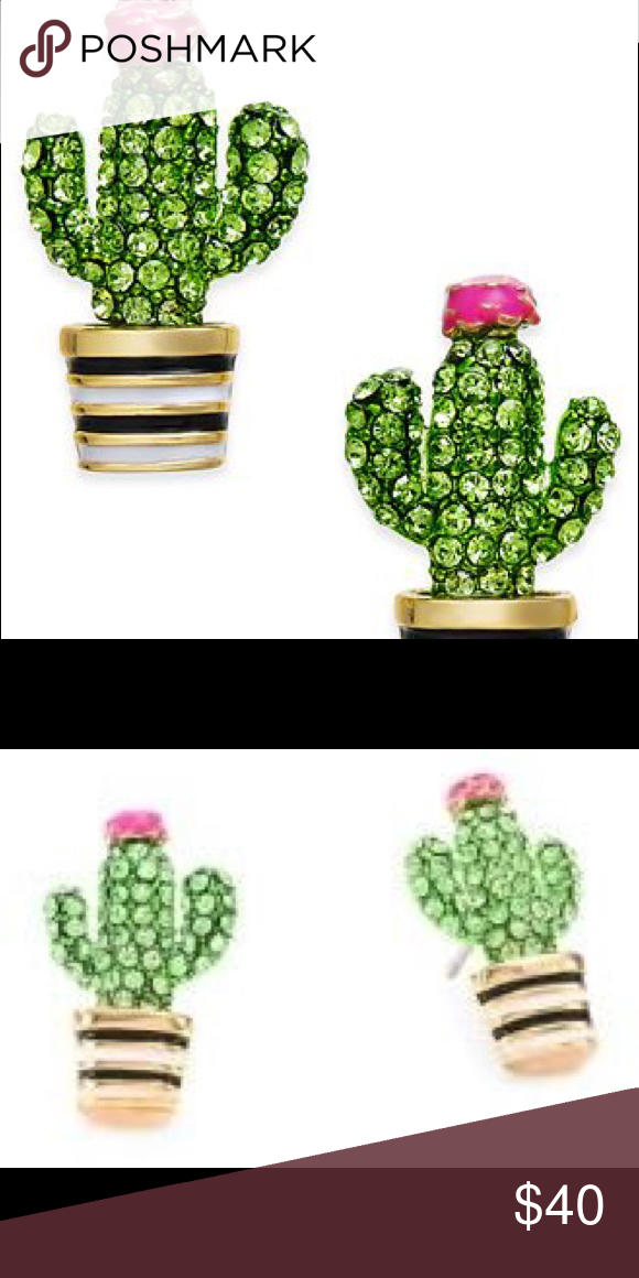 Kate Spade Cactus Studs Nwt My Posh Picks Fashion Jewelry