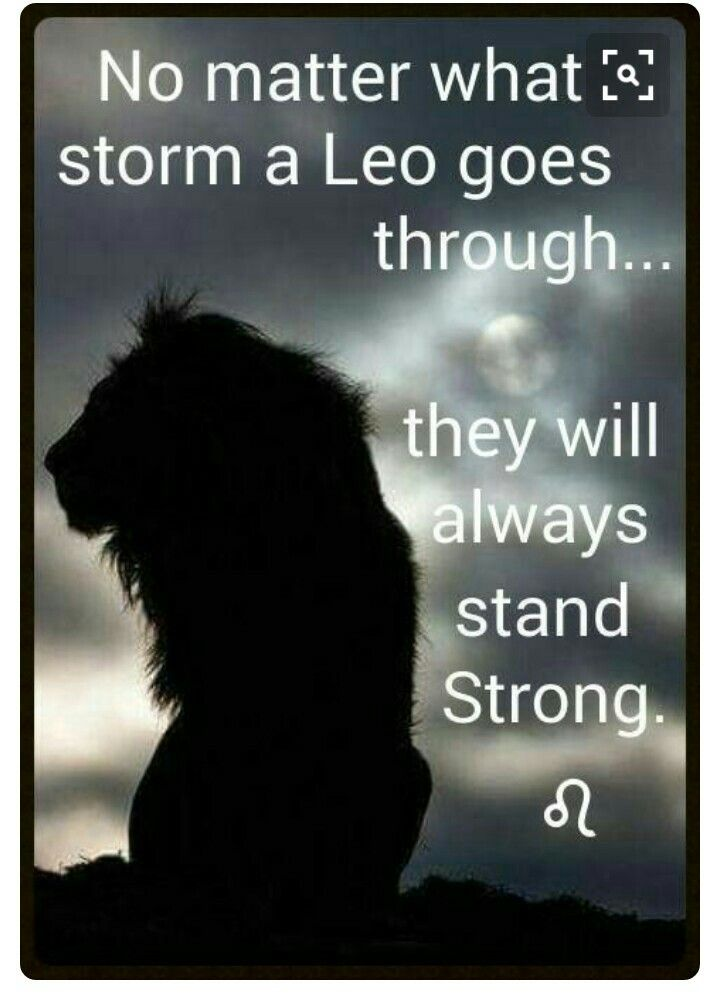 What up to all LEOs | Melanie R Clark | Leo zodiac, Leo