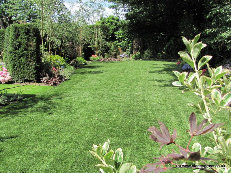 Pin by Dee Murrell on Child friendly garden Pinterest Child - sample lawn and garden