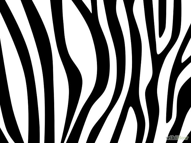 Line Drawing Zebra : Draw zebra stripes