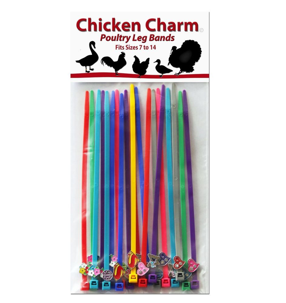 chicken charm poultry leg bands fits chickens geese ducks
