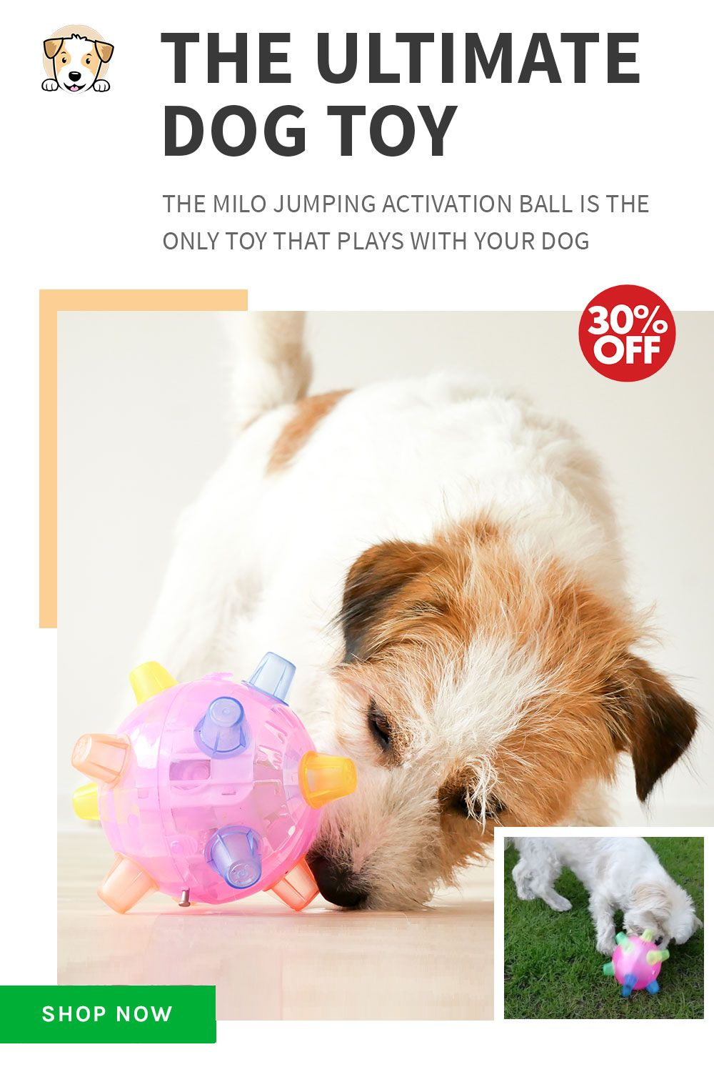 The Ultimate Dog Toy Shop Now Only At Conscious Pets 30 Off