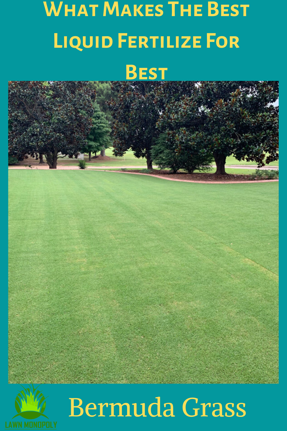 What Makes The Best Liquid Fertilize For Bermuda Grass In 2020 Bermuda Grass Bermuda Grass Care Grass Care