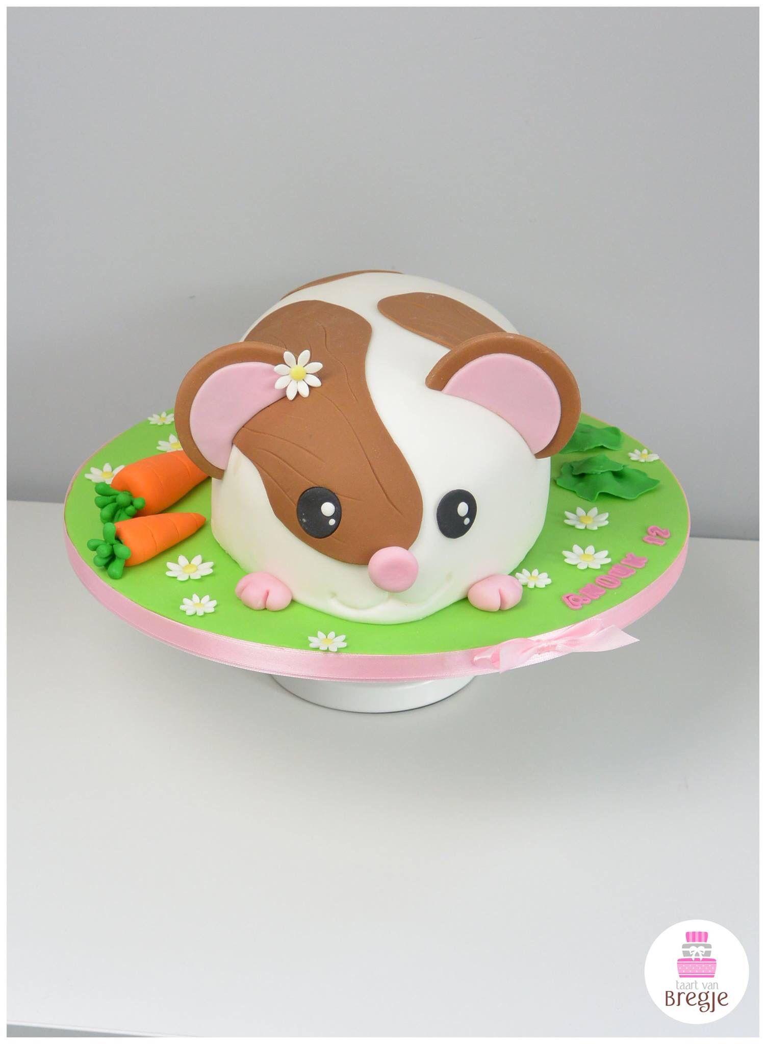 Hamster Cake Van Bregje ABBy Pinterest Cake Birthday Cakes - Hamster birthday cake