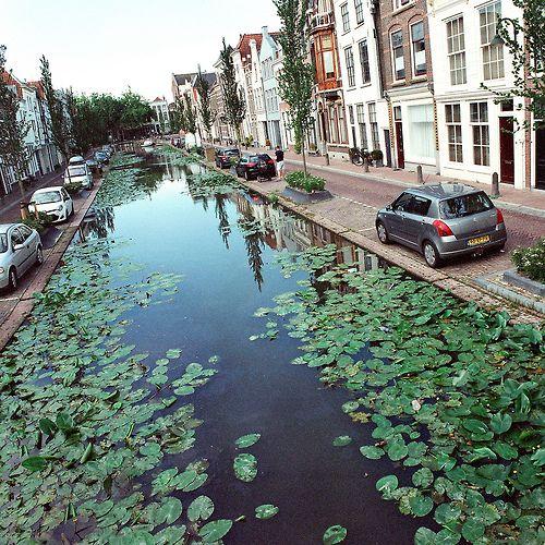 Gouda, South Holland, Netherlands by Peter Gutierrez
