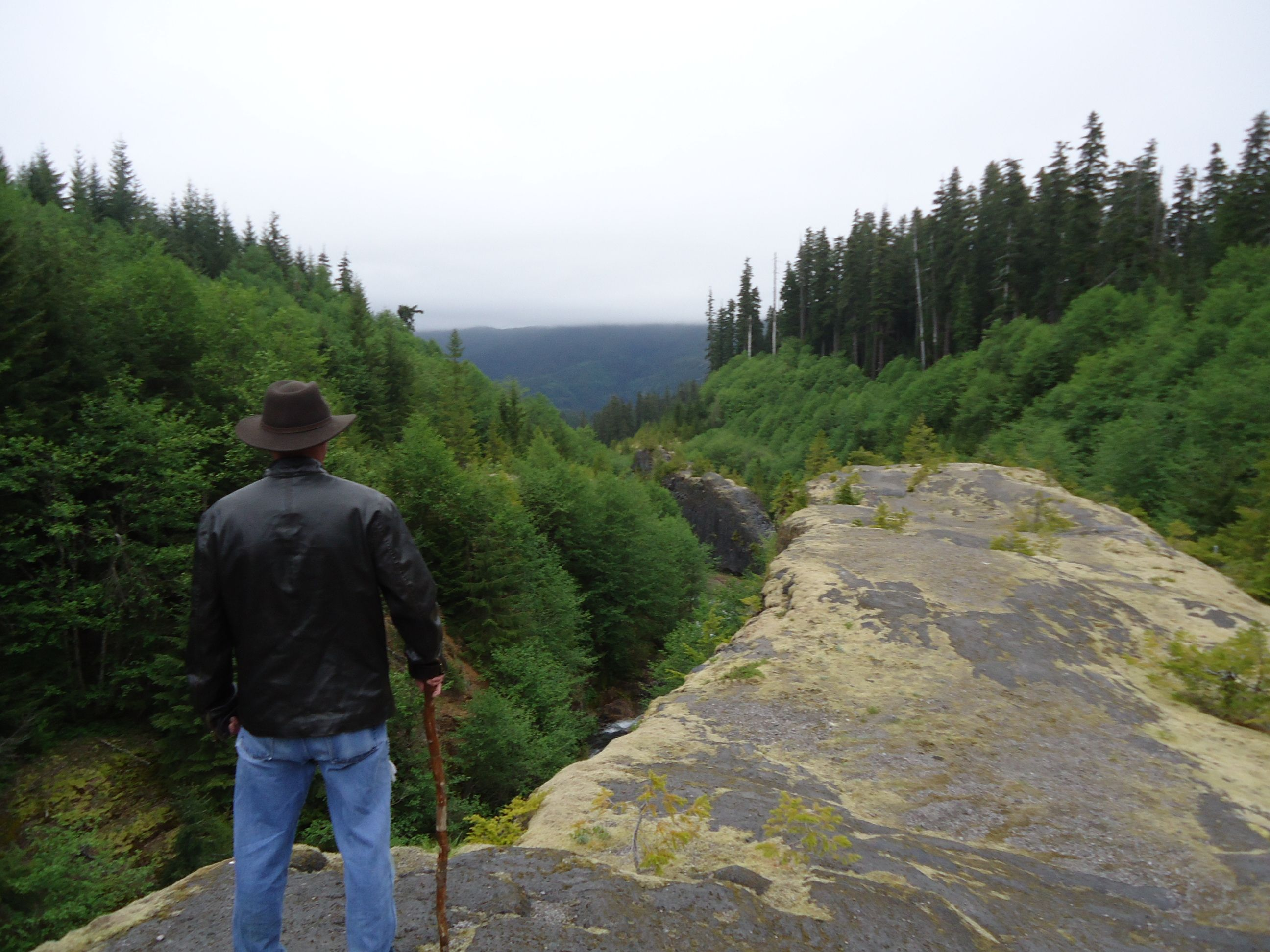 Brother, sharing a vista with me.  Mount St. Helens - WA