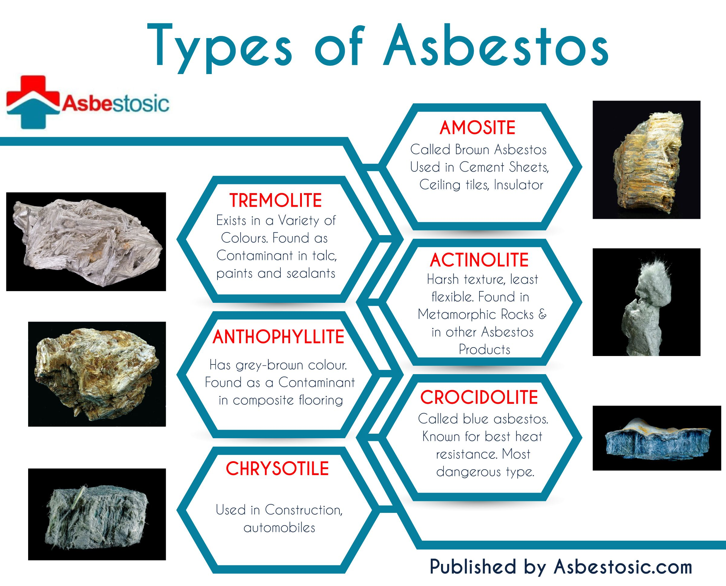 Types of asbestos. More at http://www.asbestosic.com/typesofasbestos/  Asbestos Awareness