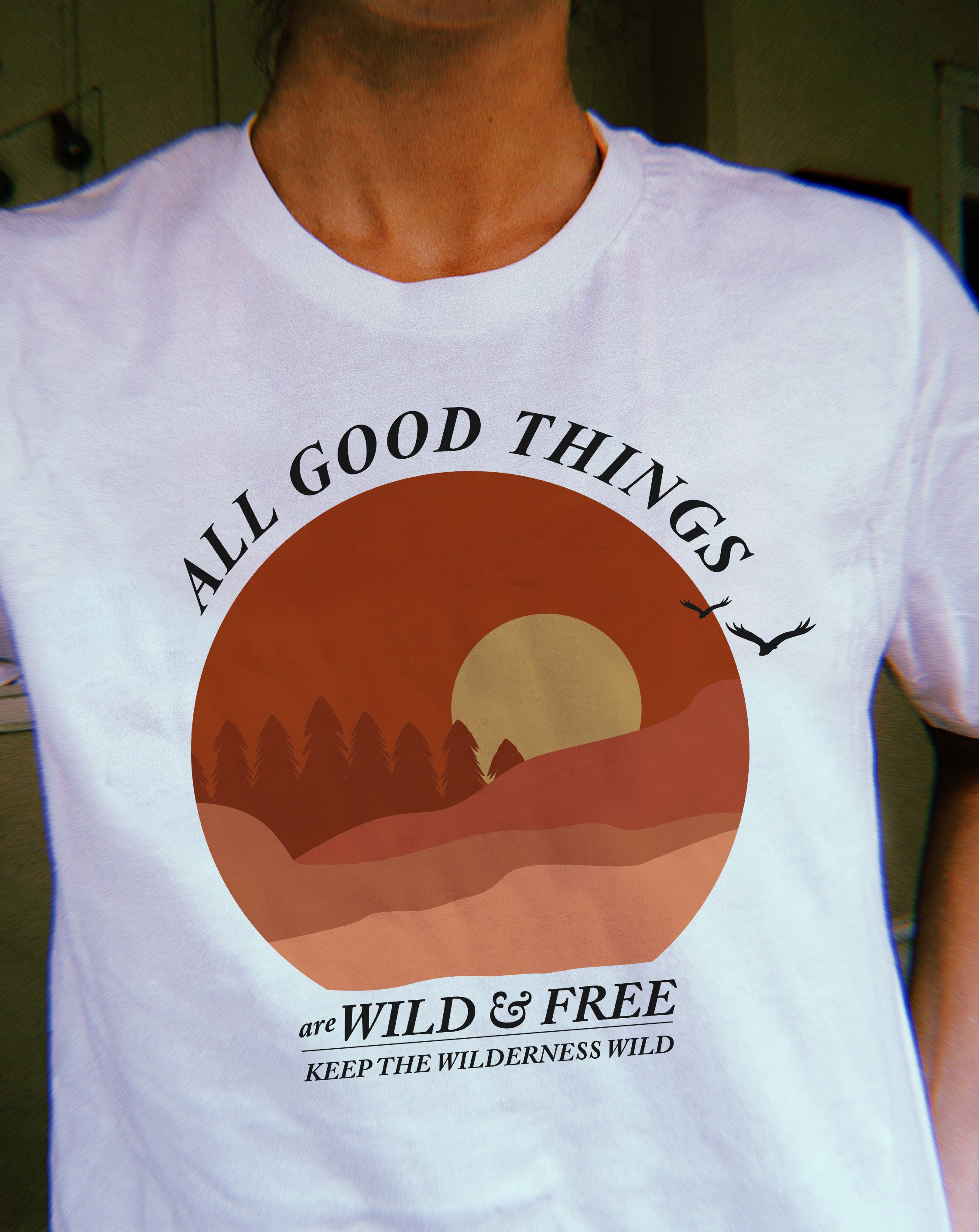 98894833cdde All good things are wild and free vintage inspired graphic t-shirt.  #graphictee #vintageshirt