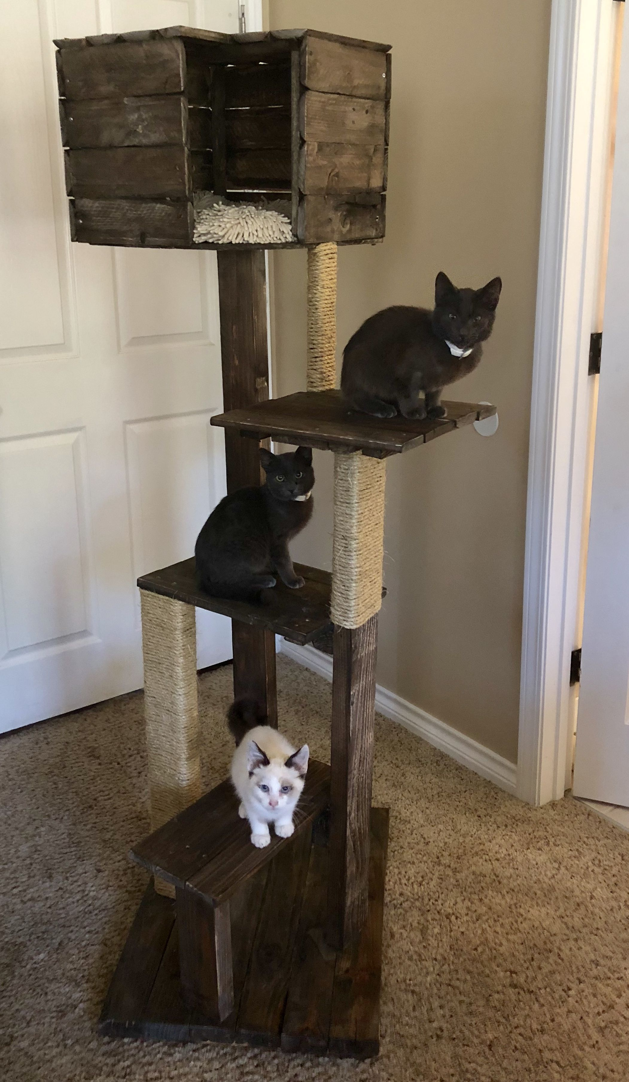 Pallet Wood Sisal Rope Cat Scratcher Tree With House Projects