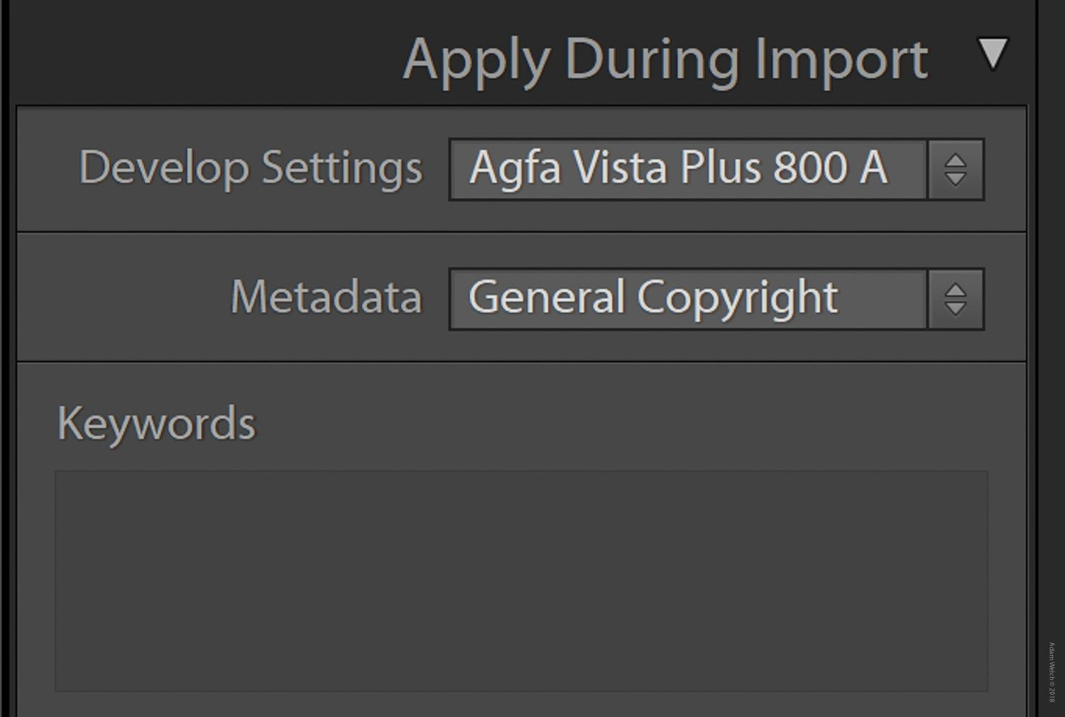 How to Use Import and Export Presets in Lightroom Classic