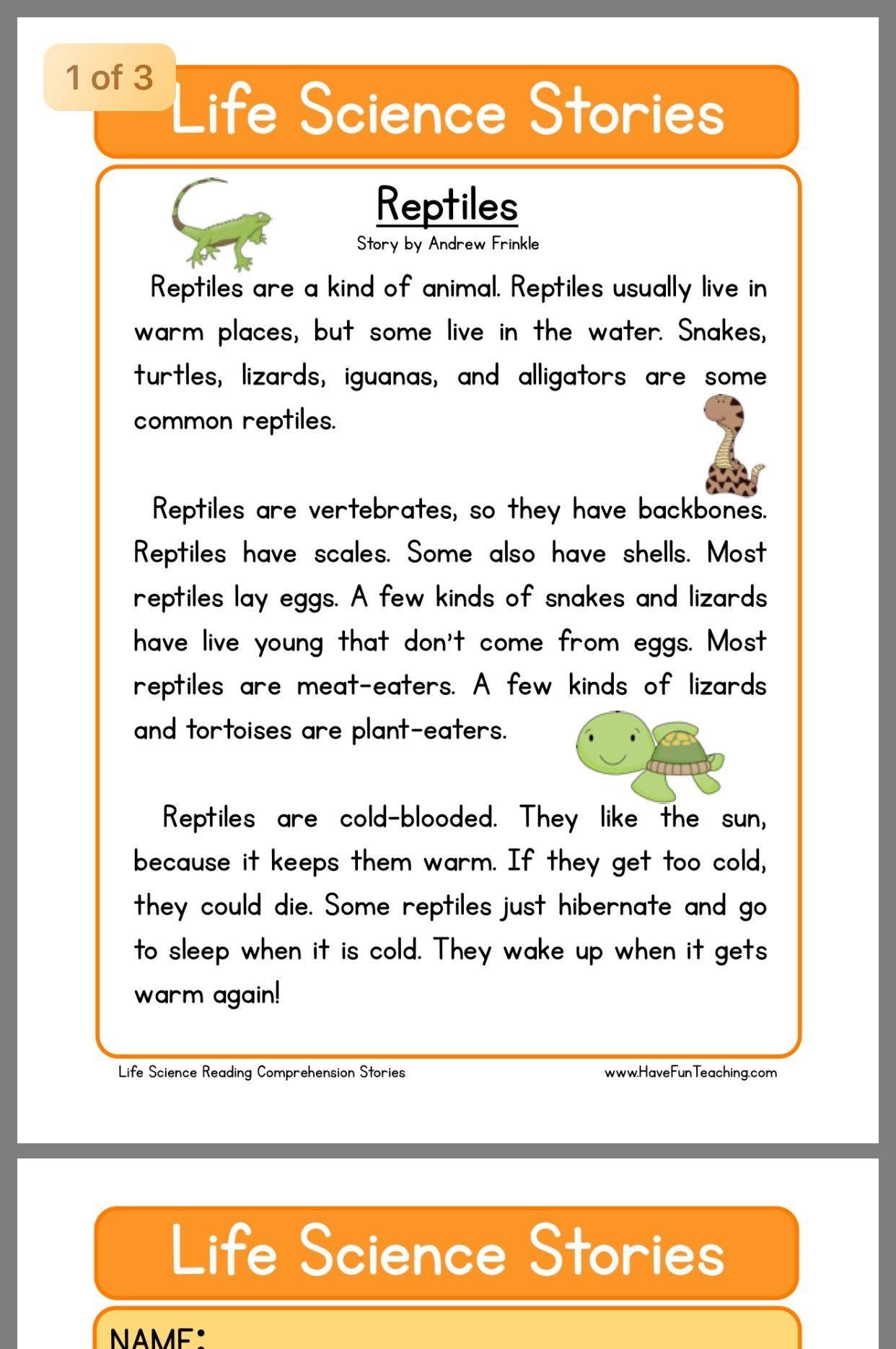 Reading Comprehension 2nd Grade Worksheets