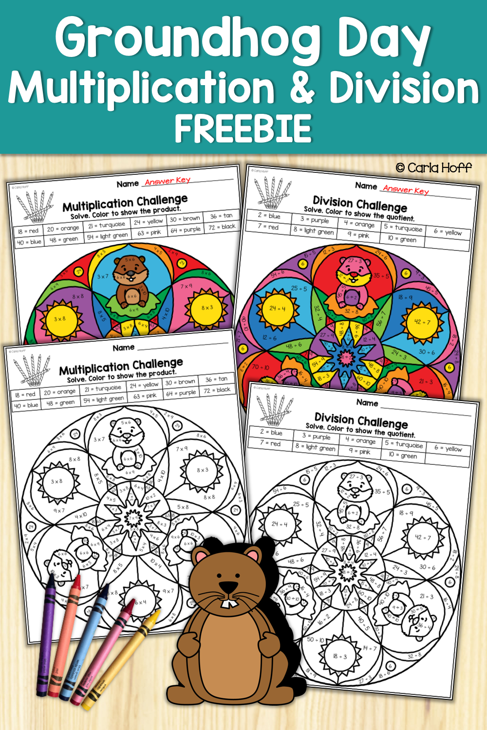 FREE! These color by code multiplication and division