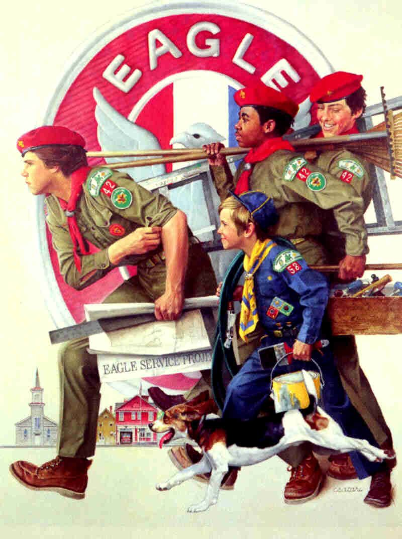 boy scouts of america | ... join boy scouts go on to become eagle ...