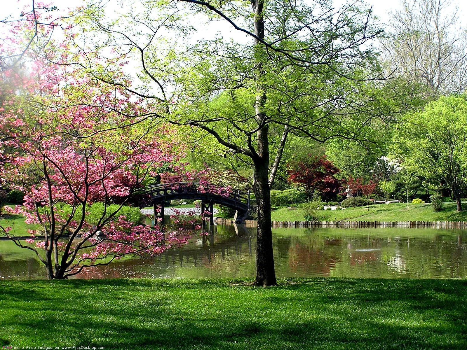 Nature Springtime Free Desktop Wallpapers For Pc Mac 11 Spring Landscape Spring Scenery Nature Wallpaper