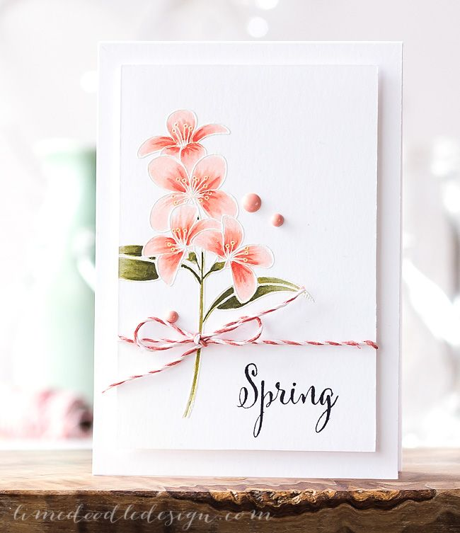 Spring Lime Doodle Design Simple Cards Cards Spring Cards