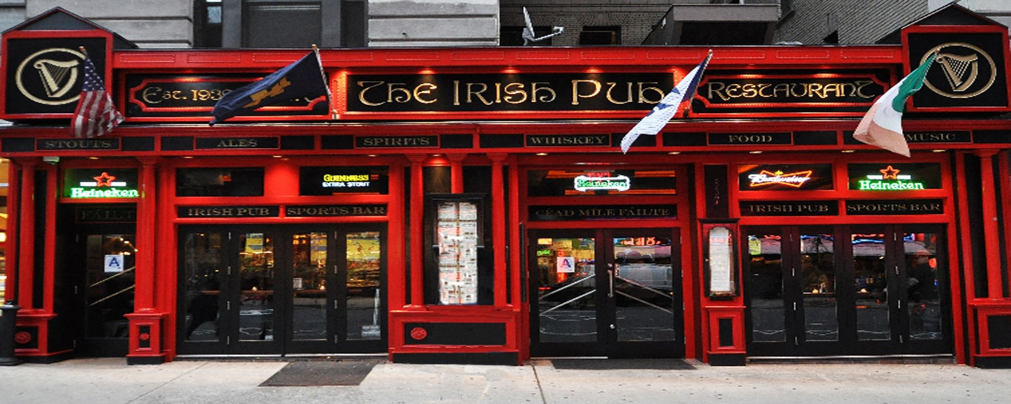 Sports Bar And Restaurant The Irish Pub Irish Pub Pub Nyc