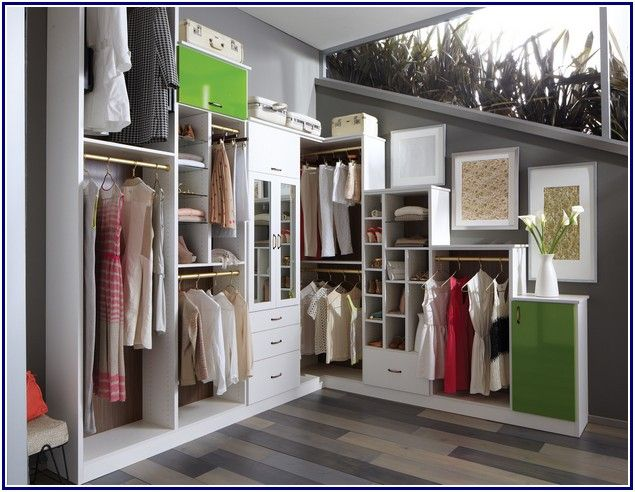 Awesome Built In Closets Designs