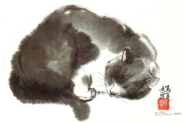 Katze (Postcrossing)