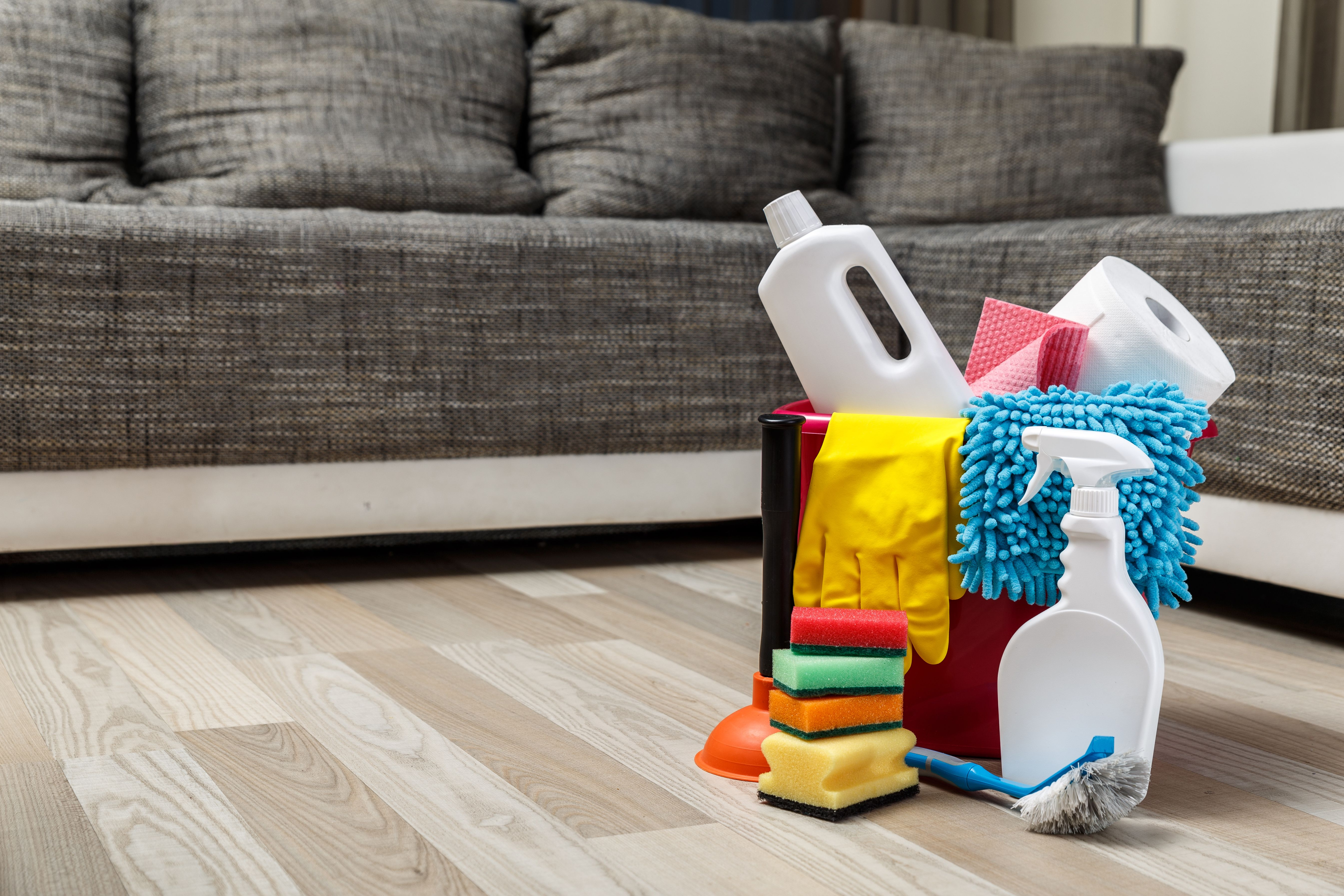 How to Clean Urine Out of Couch Cushions   Hunker   Clean ...