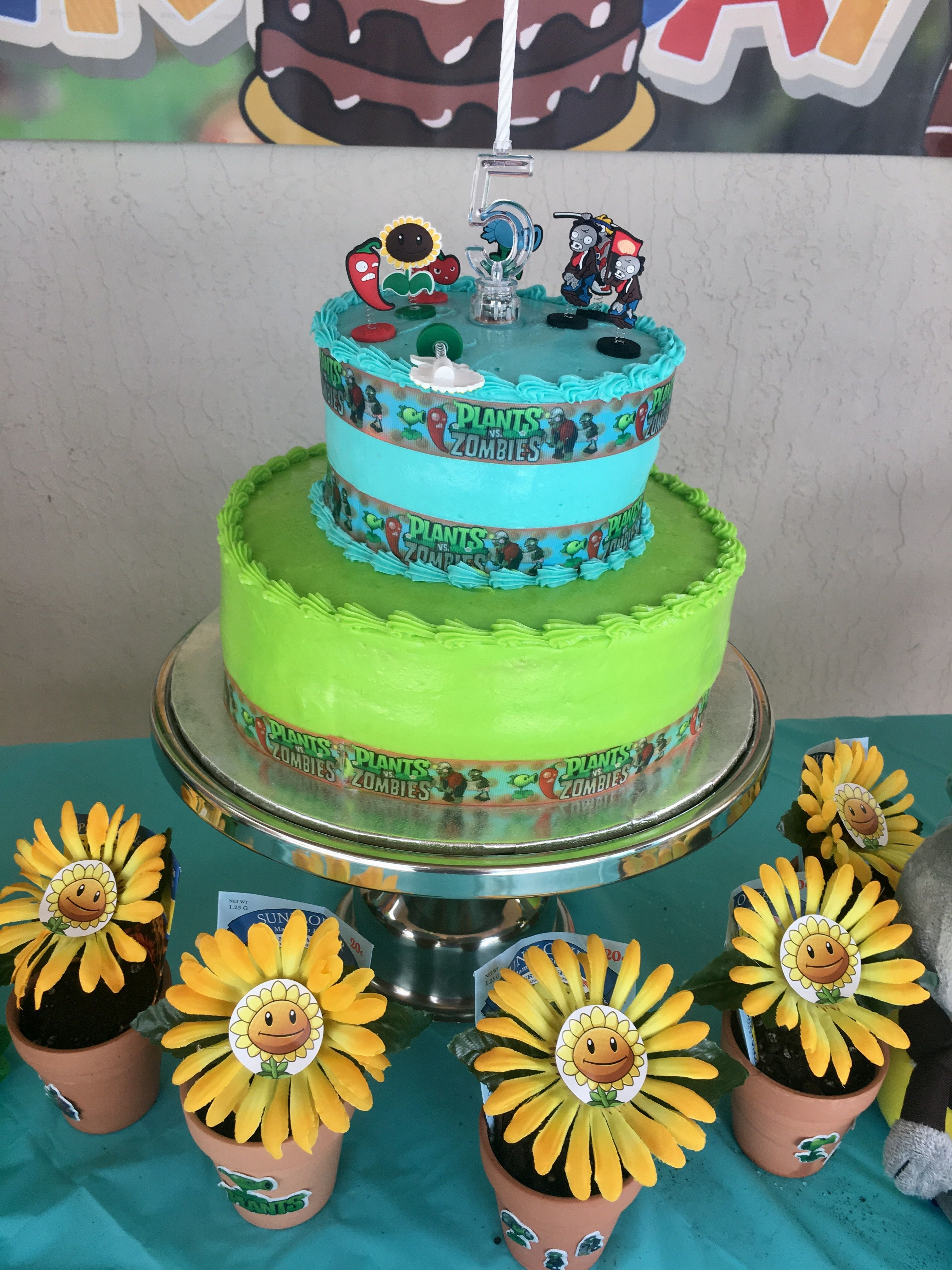 My sons plants v zombies pool birthday party Cake from Walmart