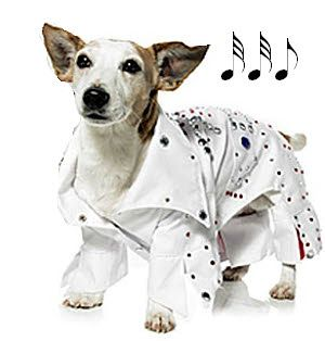 Rock Star Dog Costume Elvis Puprwear Com Pet Halloween