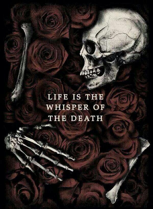 Pin By Sherrie Moak On Kool Gothic Wallpaper Skull Art