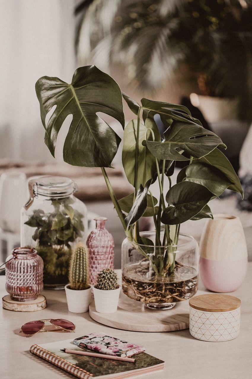 Deko Ideen für den Frühling - Deko Tipps fürs Wohnzimmer