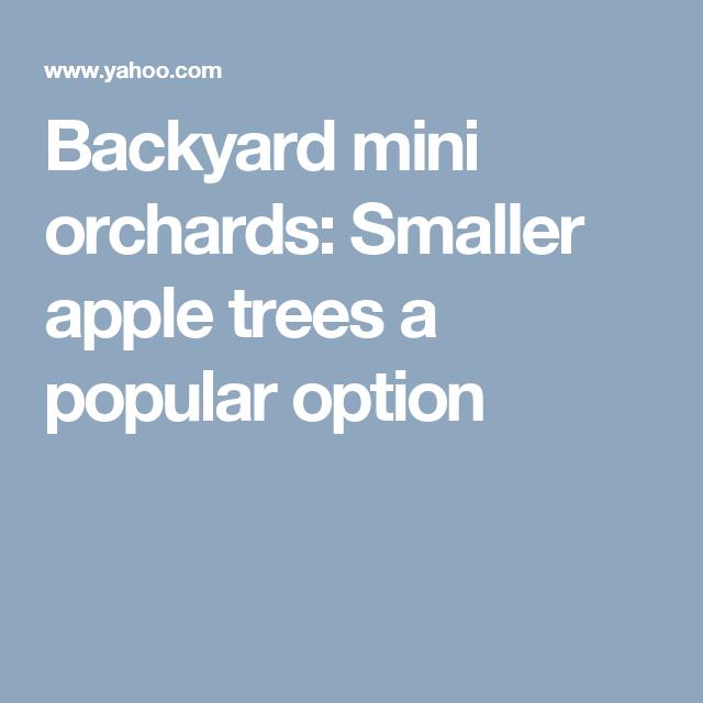 Backyard mini orchards: Smaller apple trees a popular option