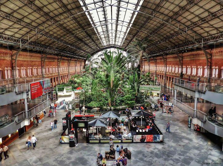 Madrid estaci n de tren puerta de atocha y su jard n for Jardines de la puerta de atocha