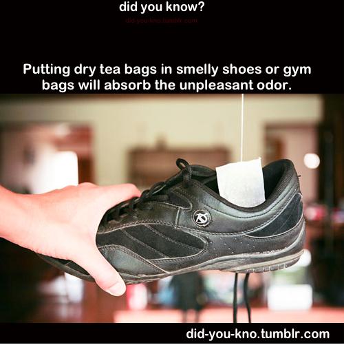 Gym Bag Odor: Remove Shoe Odor With Tea Bags!