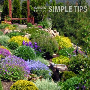 Landscaping Sloping Gardens Transform steep inclines into no mow beds garden club gardens and transform steep inclines into no mow beds garden club workwithnaturefo