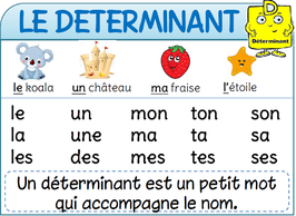 Affichages De Francais L Ecole De Crevette Ecole De Crevette Noms Et Verbes Grammaire