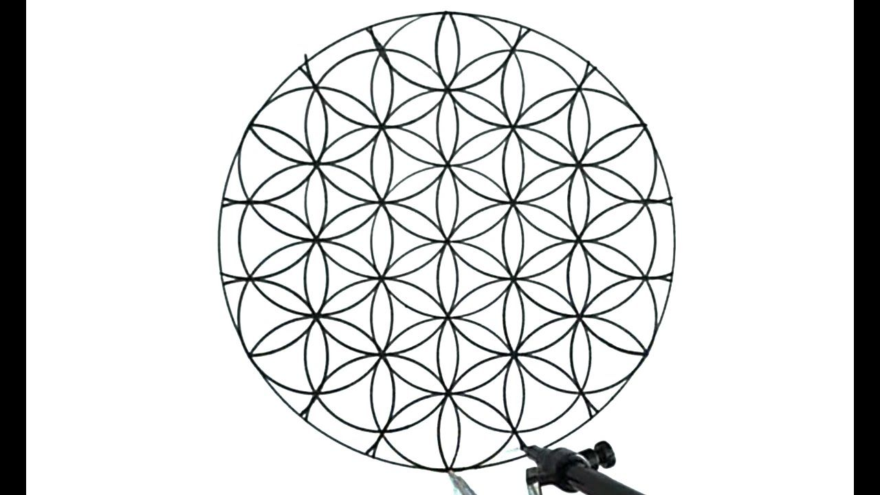 How To Draw The Flower Of Life Youtube Flower Of Life Flower