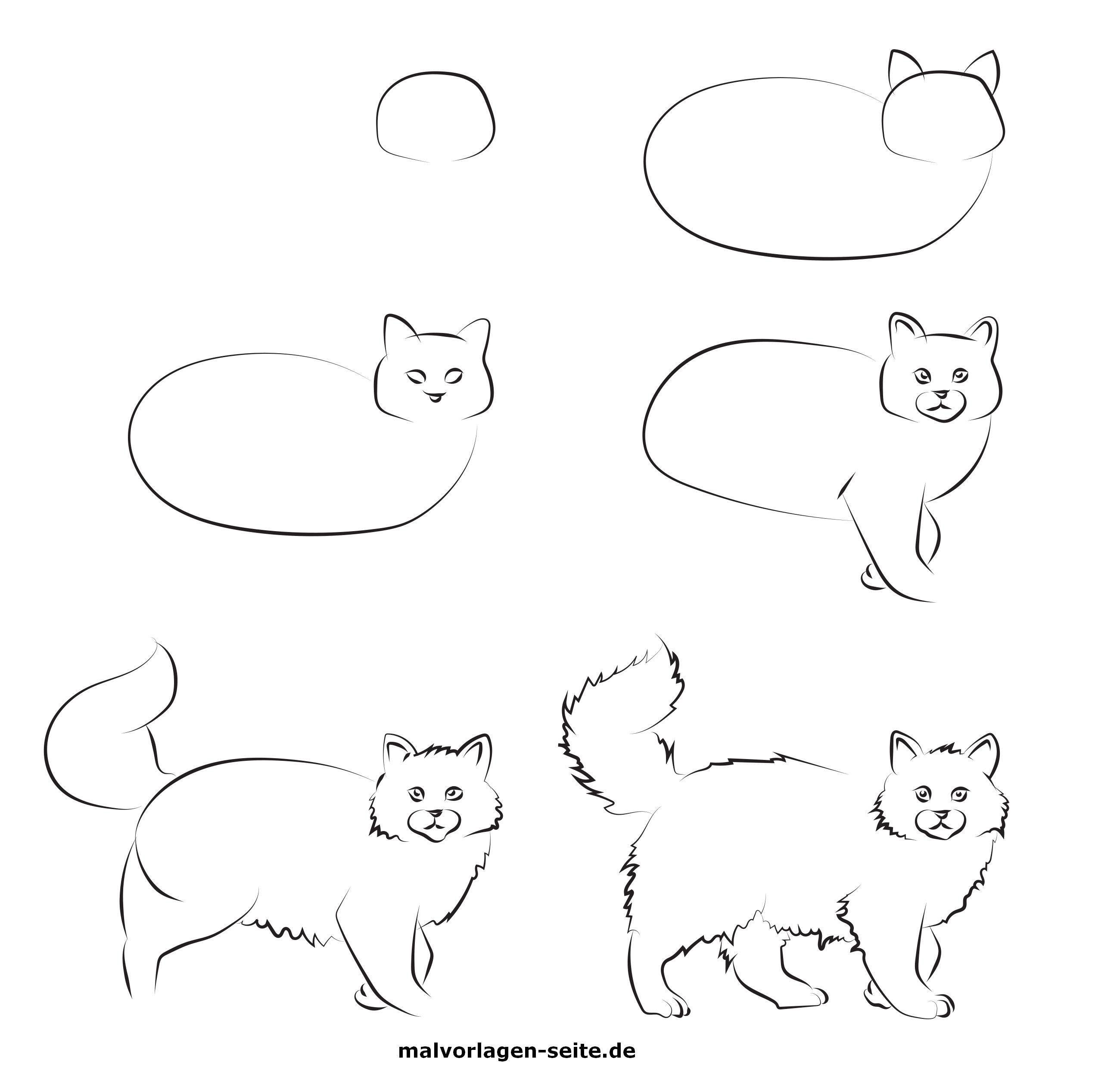 einzigartig katze zeichnen  katze zeichnen malvorlagen