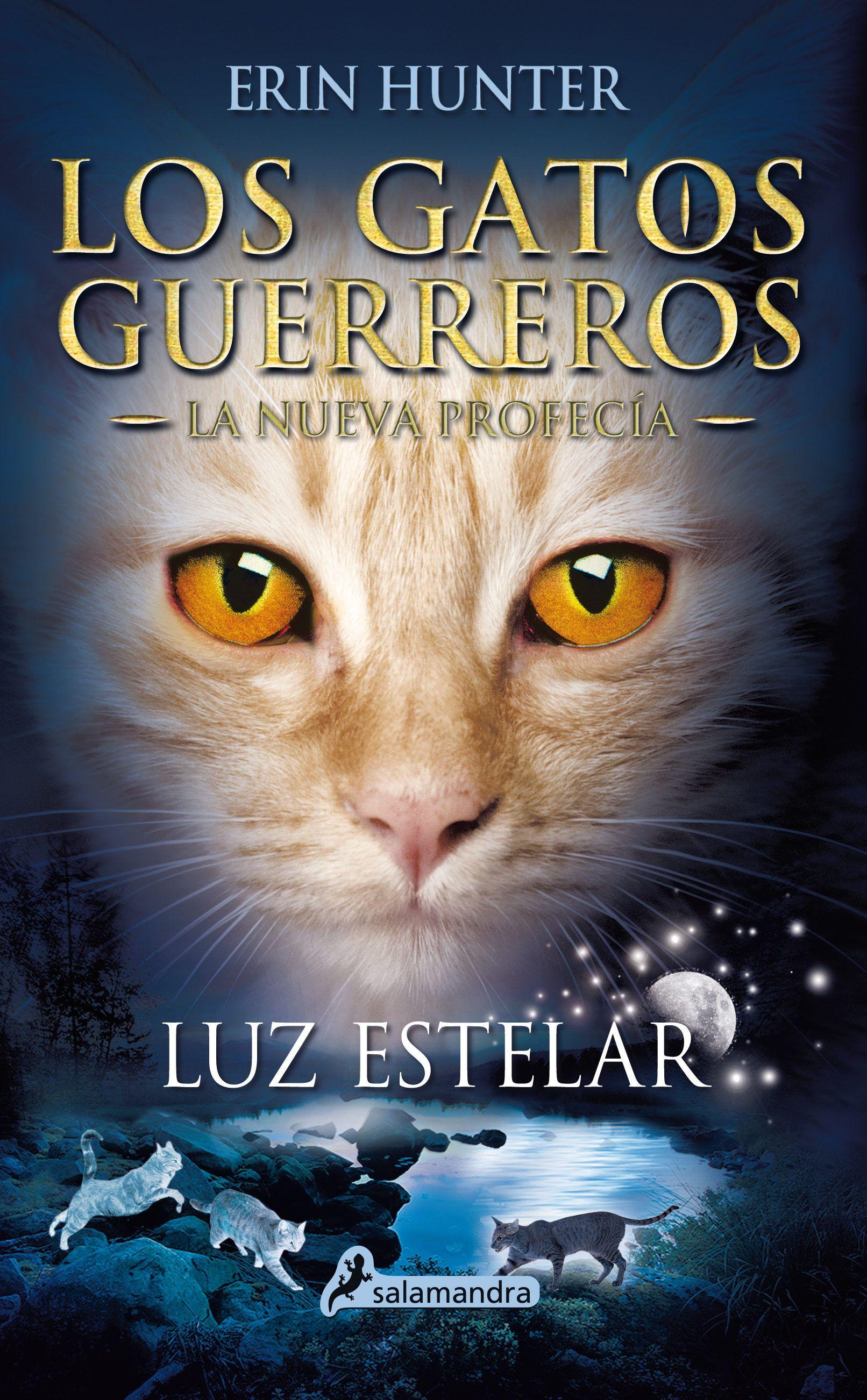 22 Ideas De Los Gatos Guerreros Los Gatos Guerreros Guerreros Gatos