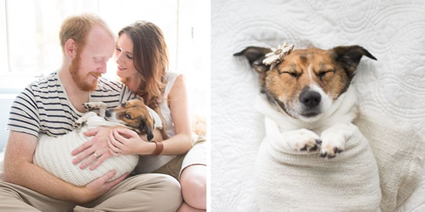 This Couple Took An Amazing Newborn Photoshoot With Their Dog