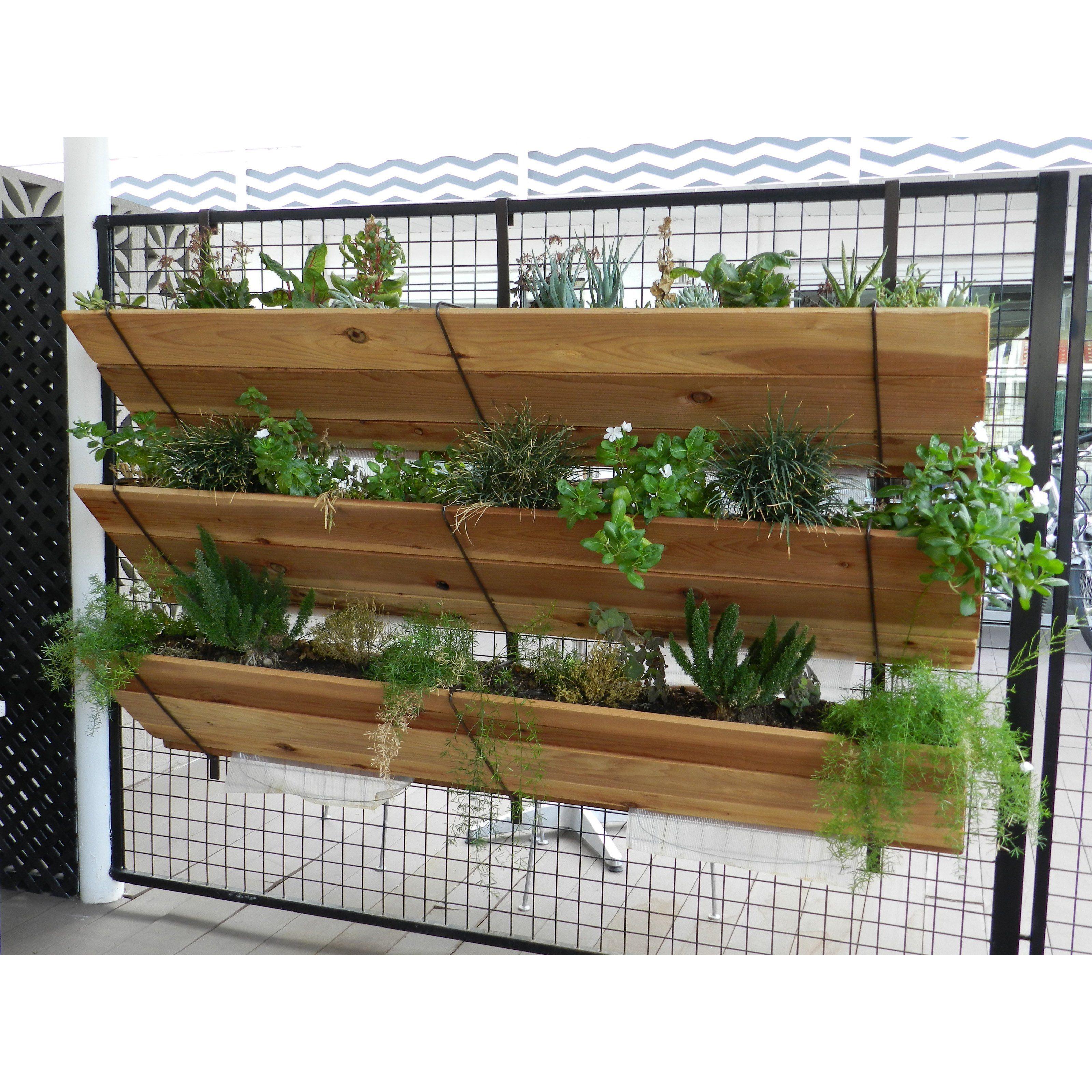 Vertical Garden - From Hayneedlecom