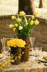 tulip_50