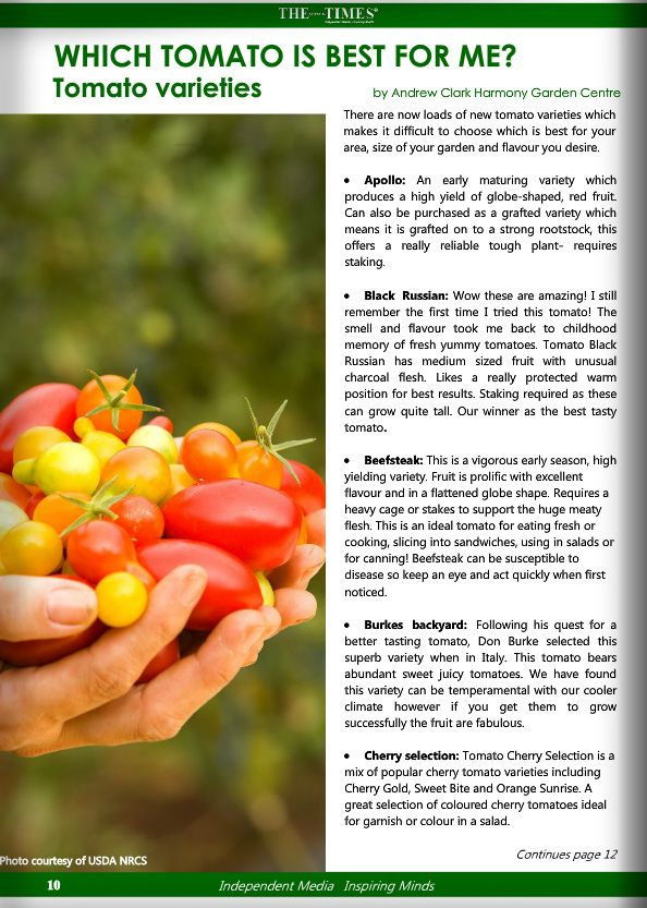 Andrew Clark Harmony Garden Centre Gives You The All The Information To Determine Which Tomato Is Best For You As Read In The Austr Garden Garden Center Clark