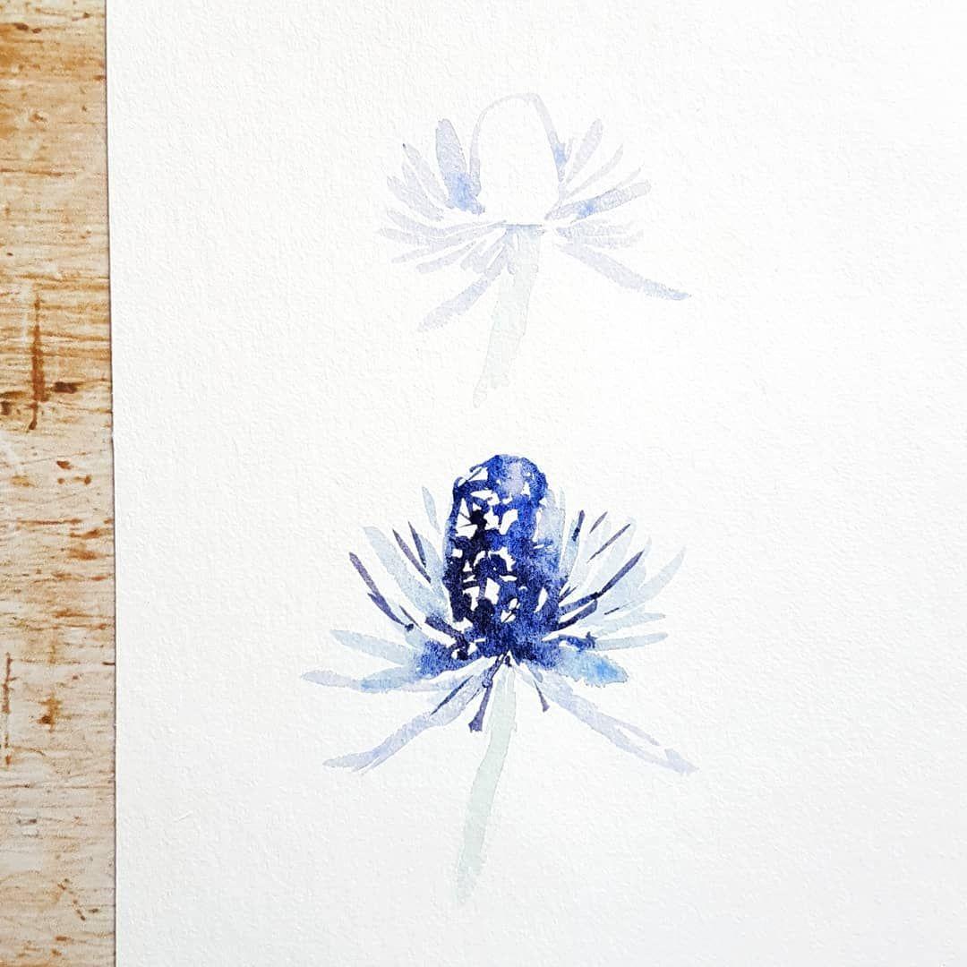 Defi Fleurs Aquarelle Sujet N 26 Chardon Bleu For