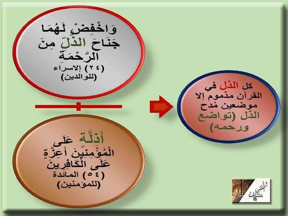 واخفض لهما جناح الذل الرحمة أذلة على المؤمنين Learn Quran Quran Language History