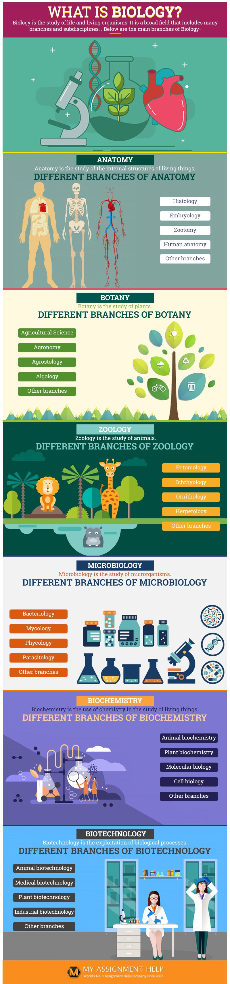 Need Biology Assignment Help What I Biochemistry Zoology Dissertation Ideas