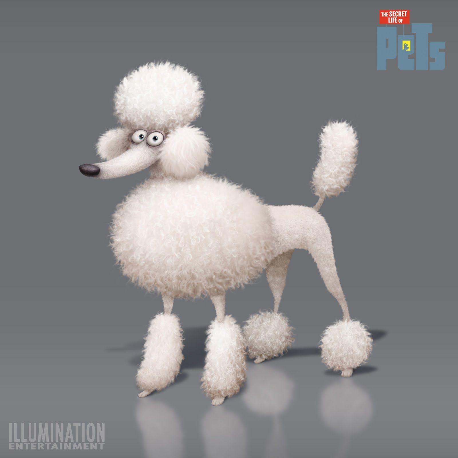 Ludo Gavillet Portfolio Poodle Drawing Dog Illustration Secret Life Of Pets