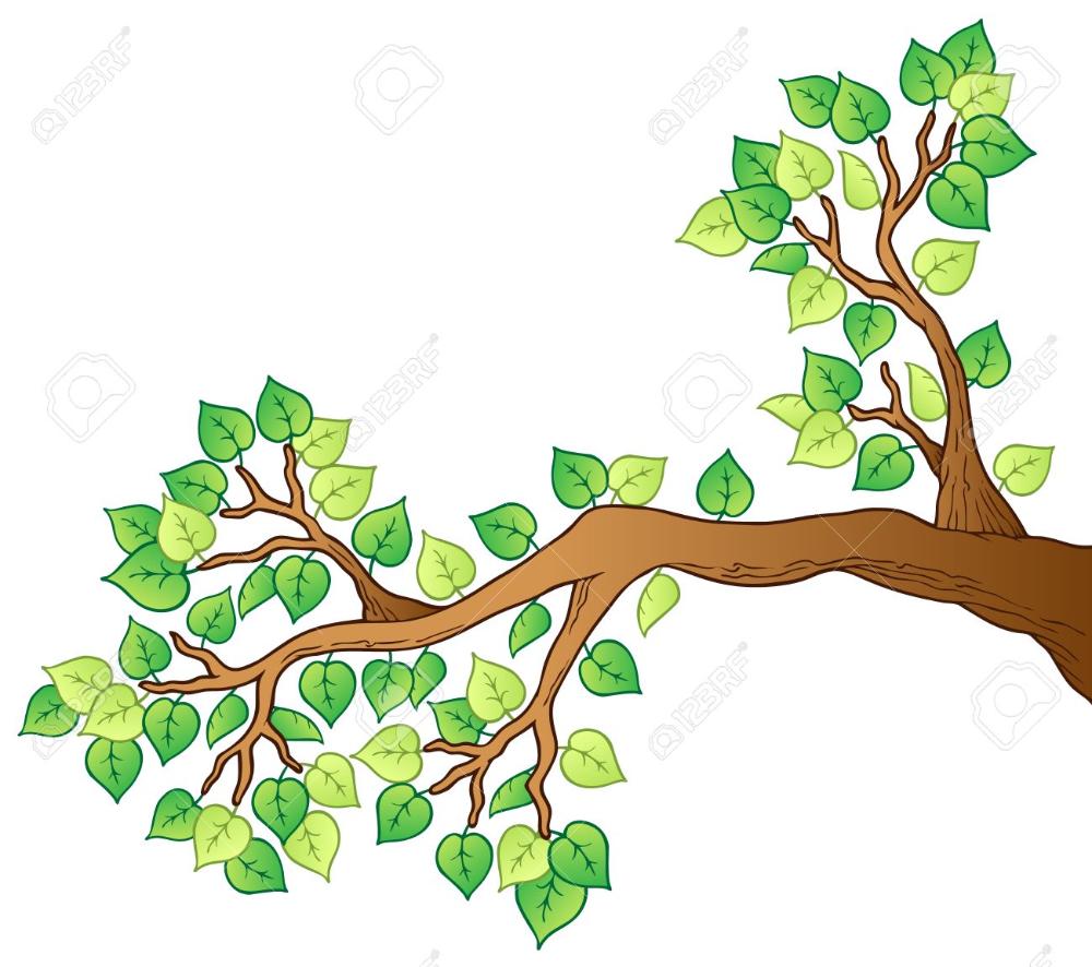 Imagenes De Ramas De Arboles Busqueda De Google In 2021 Cartoon Trees Tree Coloring Page Picture Tree