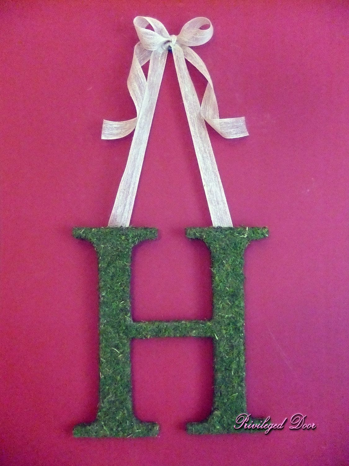 hanging initial Moss letters, Diy decor crafts, Hanging