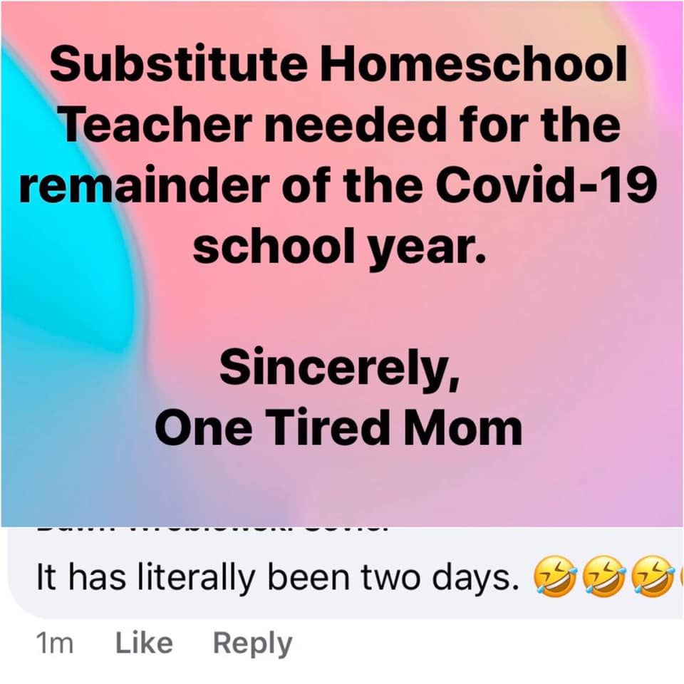 Memes From Parents Homeschooling Their Kids Homeschool Memes Homeschool Humor Homeschool