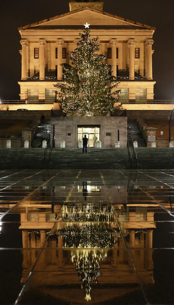 The Most Over-The-Top Christmas Trees Of The Season | Christmas tree ...