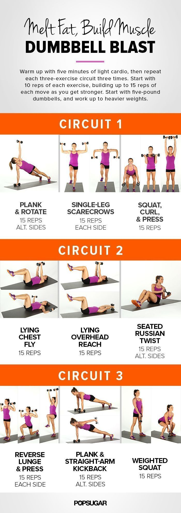 5 Incredible At Home Circuit Workouts | Burn fat build muscle, Build ...